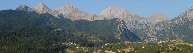 Όρος Ερύμανθος: Η χλωρίδα και η βλάστηση