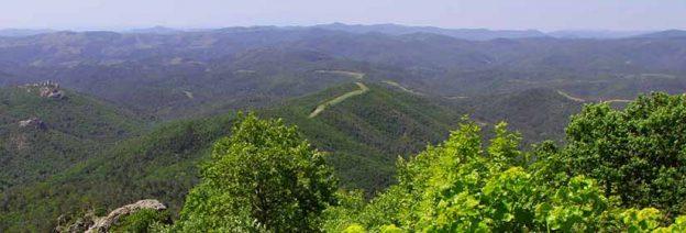 Εθνικό Πάρκο Δάσους Δαδιάς – Λευκίμης – Σουφλίου